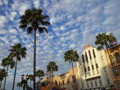 Boulevard cloud, #palms, #azul,#blye