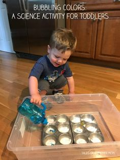 Bubbling Colors: A Science Activity for Toddlers - Tales of a Teacher Mom