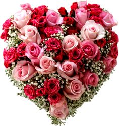 Corazón de rosas fucsia y rosa de Flores Toluca http://www.florestoluca.com