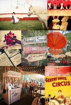 Google Image Result for http://somethingturquoise.com/wp-content/uploads/2011/08/st-circus_inspiration_board.jpg