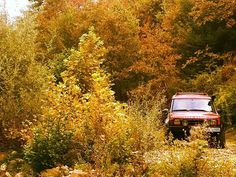 #landrover #discovery2 #v8 #kırmızı #sunset #offroad #offroading #4x4 #series2 #nature #amazing #autumn #life #lifestyle #mountains #tree #leaf #red #carporn #car #camping #life #style #nice #bushcraft #getoutside #wild #yayla #expedition #mud #photo