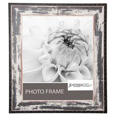 Found it at Wayfair - Shane William Rustic Seaside Picture Frame