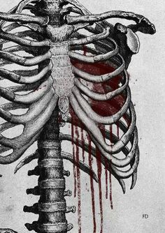 scary art blood Black and White creepy painting horror draw body dark heart skeleton ribs Macabre grotesque obscure