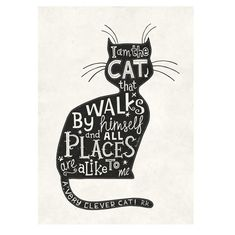Poster A Clever Cat- Steve Simpson 50 x 70