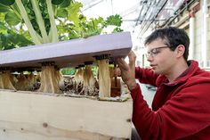 Growing Wisconsin Agriculture Careers   Farm Flavor