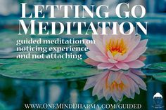 New Guided Meditation practice on letting go! Visit http://ift.tt/2l8z5Fd to listen via iTunes Google Play YouTube or subscribe via email.  #meditate #meditation #mindful #mindfulness #mindfulnessmeditation #guidedmeditation #letgo #lettinggo #letitgo