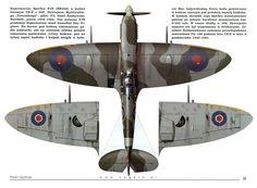 Spitfire IX - iconic elliptical wings