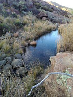 Visrivier oorsprong naby Cradock I Am An African, South Africa, River, Outdoor, Outdoors, Outdoor Living, Garden, Rivers