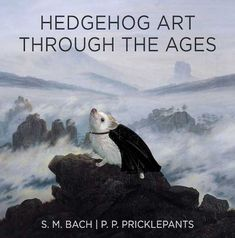 Twenty Incredible Hedgehog Facts That Will Astound You Hedgehog Facts, Cute Hedgehog, Art Through The Ages, Struggle Is Real, Shark Week, Hedgehogs, Mind Blown, The Twenties, Whale