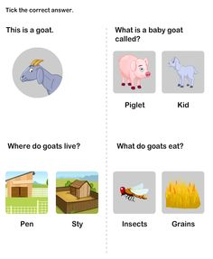 Farm Animal Worksheet 6 - science Worksheets - kindergarten Worksheets