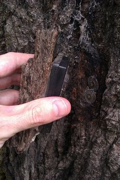 Bark as camo on this magnetic keyholder geocache. - rugged-life.com