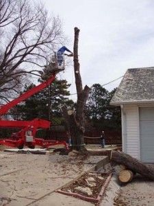 Extra precautions need to be taken when removing trees near homes because of potential roofing and siding damage. Do you have the knowhow and equipment to prevent that?