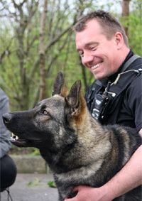 Rescued German Shepherd Dog gets second chance as police dog