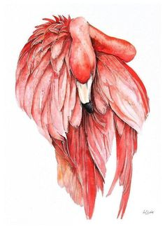444 Best Tatts Images Flamingos Flamingo Painting Paintings