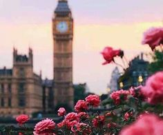 london, flowers, and travel Bild Tumblr Wallpaper, Wallpaper Backgrounds, Reisen In Europa, Destination Voyage, Adventure Is Out There, Cute Wallpapers, Iphone Wallpapers, Aesthetic Wallpapers, Nature Photography