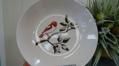 Simplistic pottery painting by using stencils by Martha Stewart - Pottery Painting at Decoy Art Studio