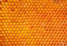 Yellow Honeycomb Wax Cell Detail Texture Background Stock Photo, Picture And Royalty Free Image. Image 1929342.