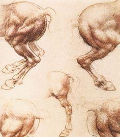 Sketches of horses by Leonardo da Vinci: History, Analysis & Facts - DIY and crafts Leonardo Da Vinci Renaissance, Renaissance Artists, Winter Art Projects, Cool Art Projects, Pop Art Background, Gcse Art Sketchbook, Horse Sketch, Kids Canvas Art, Horse Anatomy