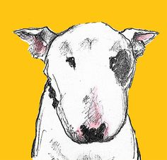 English Bull Terrier Card Yellow Dog by TheTerriersClub on Etsy