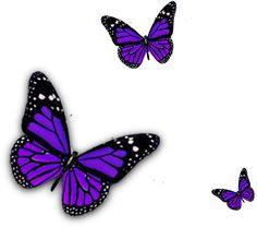 Borboleta roxa PNG roxo borboletas png roxo