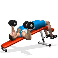 DUMBBELL RECLINE BENCH PRESS INVOLVED MUSCLES DURING THE TRAINING CHEST 8972eb532ea56