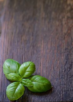 9 HERBS TO FIGHT STRESS AND CALM YOUR MIND... Clean Eating Snacks, Healthy Snacks, Healthy Eating, Atkins, Cute Food Wallpaper, Lemon Balm Tea, Basil Leaves, Snacks Für Party, Cooking On A Budget