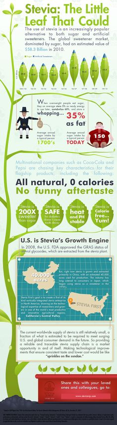 Stevia First Corporation Infographic. Stevia is the best and fastest-growing alternative sweetener on the market today!