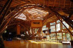 Alors c'est Mark, un danseur contemporain qui avait ce reve de realiser un grand studio de danse dans la nature, quelques bout de bois, un…