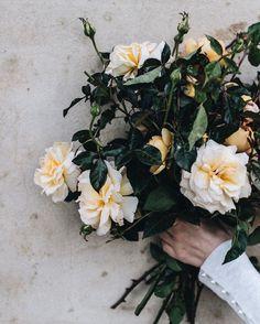 Lifestyle, Interiors & Travel Photographer by Abbie Mellé photographer {Instagram Inspired} | Cool Chic Style Fashion Flower Centerpieces, Flower Arrangements, Floral Bouquets, Floral Wreath, Site Design, Travel Photographer, Fashion Labels, Magazine Design, Daily Fashion