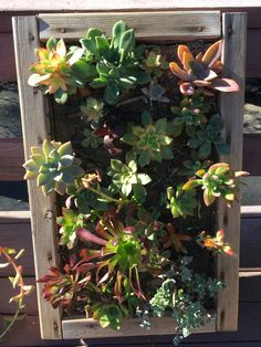 Wall planter handmade Succulent planter box