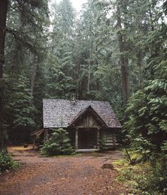 Little house in the woods.