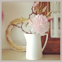 Southern belle | Peony and magnolia. | Southern Belle