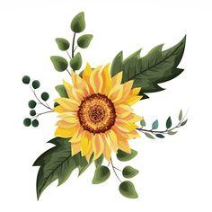 Sunflower Drawing, Watercolor Sunflower, Floral Watercolor, Pencil Drawings, Art Drawings, Sunflower Illustration, Illustration Flower, Floral Texture, Sunflower Design