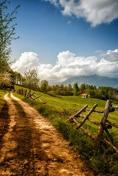 The only thing missing is an old pickup. I do love country roads.