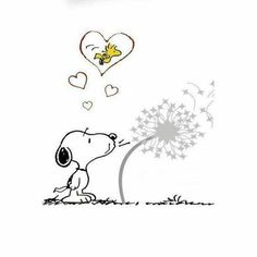 Dandelion wishes (Snoopy)