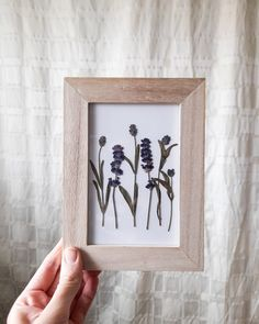 Dried lavender in a wooden frame #moliaflorals #pressedflowerart Flower Artwork, Pressed Flower Art, Art Pictures, Find Art, Etsy Seller, Lavender, Unique Jewelry, Frame, Handmade Gifts
