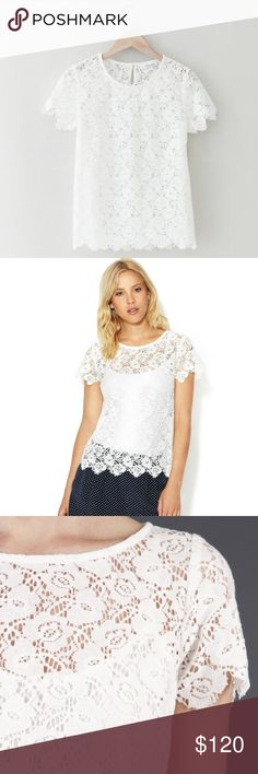 """NWOT Steven Alan Lane Lace Top Fantastic semi-sheer lace blouse from Steven Alan in white/off white. Features crew neckline, scalloped unfinished edges, keyhole opening, back button closure, tonal top stitching, cotton blend weaving, and panel seaming. Approx. 22 1/2"""" from should to hem. Works great with under-layer or nude bra - under-layer not included. Must have closet staple! NWOT. Steven Alan Tops Blouses"""