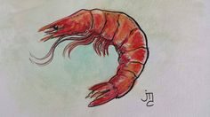 Shrimp Mixed Media Painting by J. Travis Duncan #jtravisduncan #panoplei