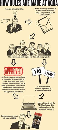 Ever wonder how AQHA is governed? Learn more about your Association at www.aqha.com.