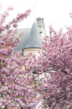 Paris Fine Art Photography  Hotel de Sens in by GeorgiannaLane