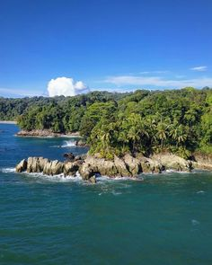 Punta Brava Nuquí Maine, River, Hotels, Outdoor, Bowrider, Find Cheap Flights, Whale Watching, Humpback Whale, Rainforests