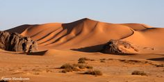 photo de belle sahara Algerien - Recherche Google