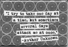 """I try to take one day at a time, but sometimes several days attack me at once."""