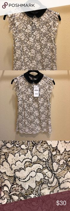 NWT Zara Sheer Lace Blouse Machine washable. Never worn. Sheer lace. Zara Tops Blouses