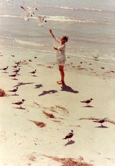 TRUE JOY  feeding beloved sea gulls.