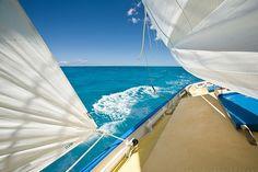 Sailing... sailing away....
