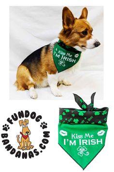 8e1ff576a406 9 Best St. Patrick's Day images in 2018 | Bandana, Bandanas, Dog bandana
