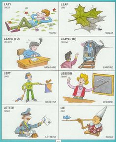 #1351 Parole Inglesi Per Piccoli e Grandi - #Illustrated #dictionary - L2