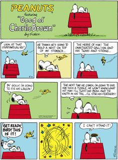 "Charles M. Schulz's classic ""Peanuts"" looks at the lives of Charlie Brown, Snoopy, and other favorite characters. Snoopy Cartoon, Snoopy Comics, Peanuts Cartoon, Peanuts Snoopy, Peanuts Comics, Charlie Brown Christmas, Charlie Brown And Snoopy, Snoopy Love, Snoopy And Woodstock"