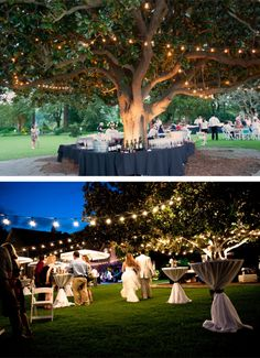Love how this wedding bar is surrounded around a fabulous oak tree. So unique.